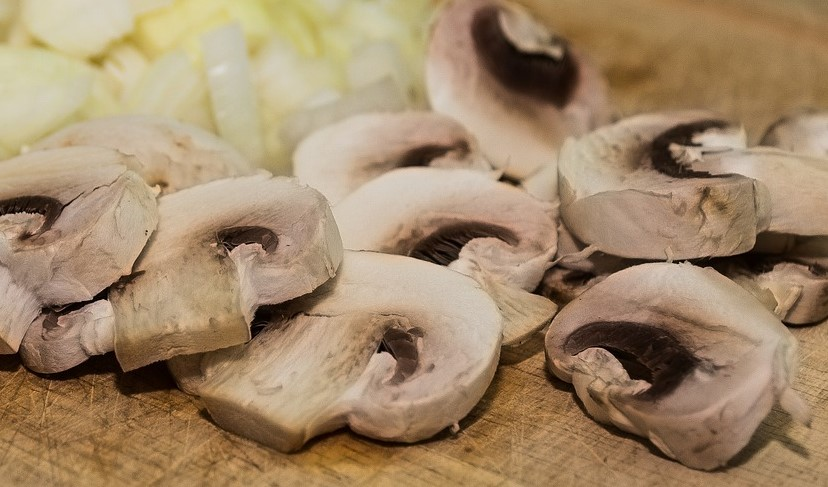 This image has an empty alt attribute; its file name is mushrooms-417101_1280-2.jpg