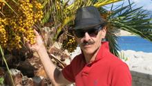 Keith_palm